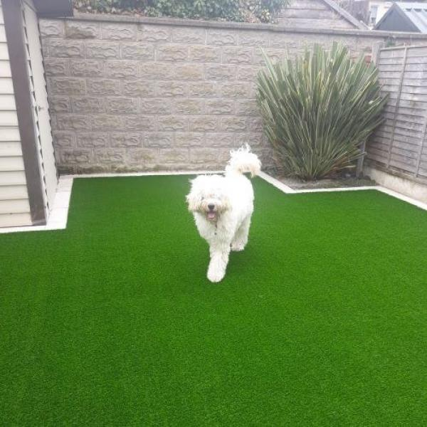 ​​Artificial Turf for Dogs